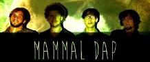 Mammal Dap